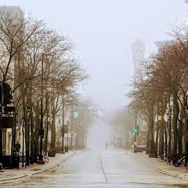 by Don Scherschel - City,  Street & Park  Street Scenes