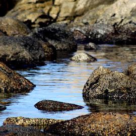 Shadows by  Magdalena Weaver - Landscapes Waterscapes ( waterscape, ocean, landscape, rocks, shadows )