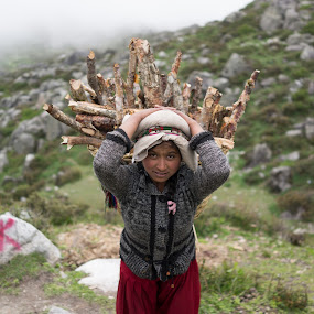 Transporting log to Kyanjing Gumba, Langtang, Nepal by Vinchel Budihardjo - People Portraits of Women