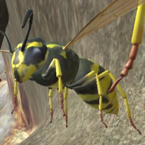Wasp Nest Simulator 3d - Pro