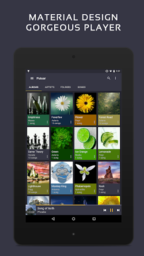 Pulsar Music Player Pro - screenshot