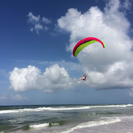 Fan Club by Donna Vasquez - Sports & Fitness Other Sports ( flying, flight, waves, parachutte, beach, surf, fan )