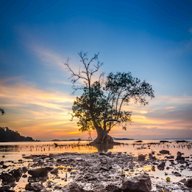 Pantai Persero by Bayu Irwanta - Landscapes Sunsets & Sunrises