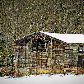 I Worked Hard by Keith-Lisa Bell Bell - Buildings & Architecture Decaying & Abandoned ( barn, snow, forest, digital photography, abandoned )