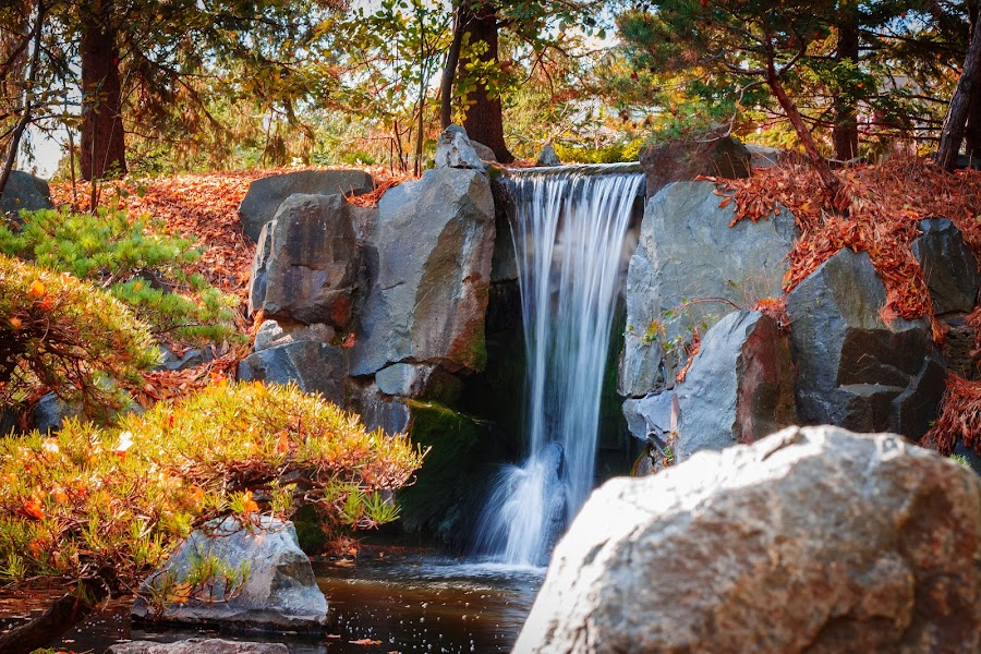 by Bonnie Filipkowski - Landscapes Waterscapes ( minnesota, 2015, fall, waterfall, arboretum,  )