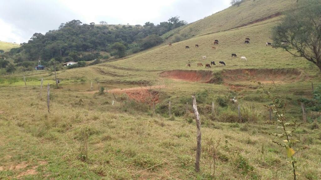 Fazenda / Sítio à venda em Secretário, Petrópolis - Foto 8