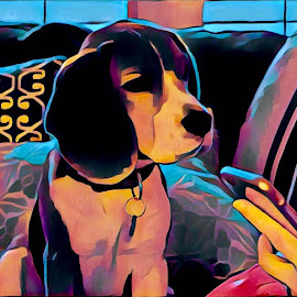 Beagle Awaiting Internet by Bruce Feldmeyer - Illustration Animals