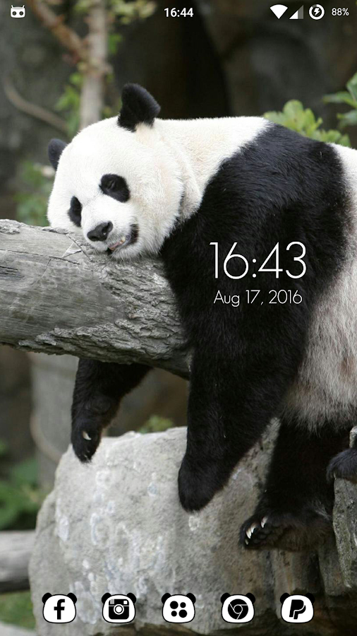 Panda Icon Pack Screenshot 2