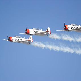 Stunt Group by Malcolm Duke - Transportation Airplanes ( red, plane, stuntplane, stunt, smoke,  )