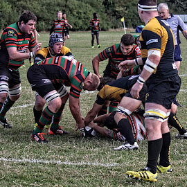 LRU 79 by Michael Moore - Sports & Fitness Rugby