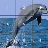 Game Kids Dolphin Slide Puzzle apk for kindle fire