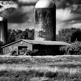 Barn 2 by Grady  Welch - Black & White Buildings & Architecture ( black & white, b&w, creek, barn, water )