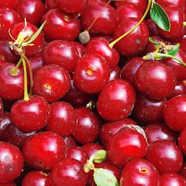 my cherry by LADOCKi Elvira - Food & Drink Fruits & Vegetables