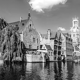 Bruges by Pravine Chester - Black & White Buildings & Architecture ( buildings, monochrome, bruges, black and white, architecture )
