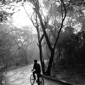 Lead me into light by Sridhar Balasubramanian - Black & White Street & Candid ( cycle, b&w, park, black and white, shadow, street, light )