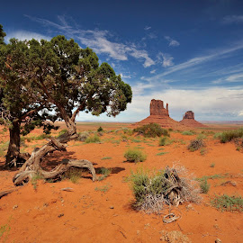 Monument Valley by Olivier Damanet - Landscapes Deserts ( navajo, arizona )