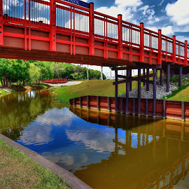 Wet or Dry? by Mark Ayers-Stebenne - City,  Street & Park  Street Scenes ( reflection, walking, red, park, fitness, florida, tropical, bridge, sarasota,  )