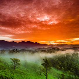 My Red Sunrise by Ron T - Landscapes Mountains & Hills ( curve, clouds, hills, mountain, viet nam landscape, red sky, grass, green, cloudscape, vietnam, forest, red sunrise, curves, foggy, mountains, dawn, sky, fog, greenery, da lat, sunrise, landscapes, mist )