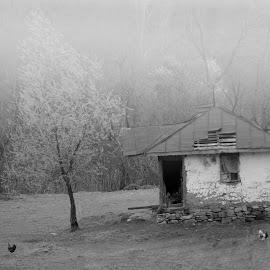 Untold stories by Alexandru Razvan - Buildings & Architecture Homes ( story, village, nature, house,  )