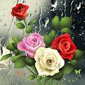 APK App Drop Roses for BB, BlackBerry