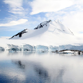 Antarctica by Stephanie Salinsky - Landscapes Travel ( amazing, antarctica, icebergs, ice, beautiful, 7th continent, breathtaking, pristine )
