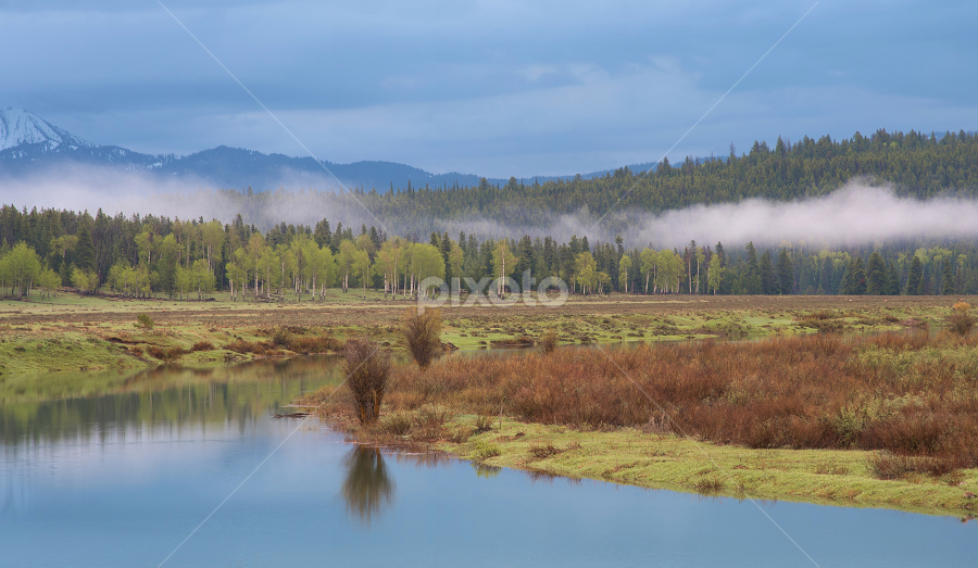 Gand Tetons National Park by Phyllis Plotkin - Landscapes Waterscapes ( waterscape, grand tetons national park, clouds, water, trees, landscape )