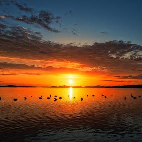 Classic by Branko Meic-Sidic - Landscapes Sunsets & Sunrises ( prosika, orange, hdr, sea.seascape, sunset, croatia, dramatic, meicsidic, pirovac, colours )