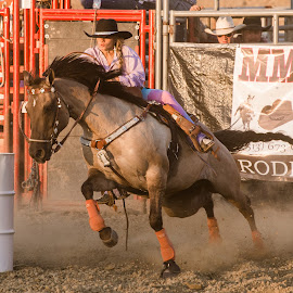 Cowgirl by Jim Freeman - Sports & Fitness Rodeo/Bull Riding ( barrel racing, barrel race, racing, horse, action, rodeo, cowgirl )