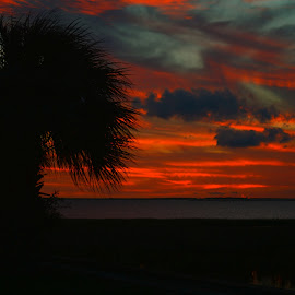 Sunset by Brenda Shoemake - Landscapes Sunsets & Sunrises