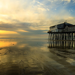 Old Orchard Beach Pier at Sunrise by Tom Whitney - Travel Locations Landmarks ( landmark, old orchard beach, dawn, north america, maine, pier, places, sunrise, usa )
