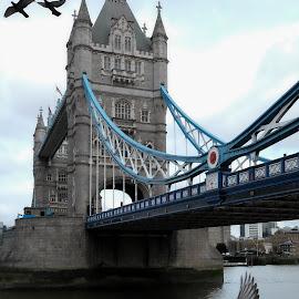 Take flight by Paul Coomber - City,  Street & Park  Street Scenes ( flight, london, tower bridge, birds, city )