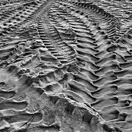 Tracks by Randi Hodson - Abstract Patterns ( sand, patterns, wheel, road, tracks )