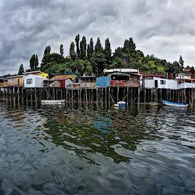 Stilt houses in Castro by Charles Brooks - City,  Street & Park  Neighborhoods ( water, old, reflection, chiloe, stilt, forrest, palsfito, harbour, trees, historyic, house, island )