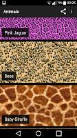 Screenshot of Animal Print Wallpapers