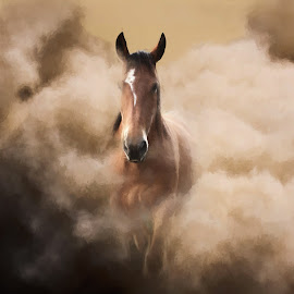 Dusty Horse by Charlie Alolkoy - Digital Art Animals ( gallop, horse, dust, cloud, run )