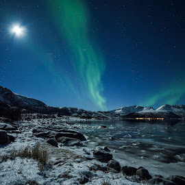 Aurora Borealis by Jens Andre Mehammer Birkeland - Landscapes Mountains & Hills ( reflection, moon, grass, green, aurora borealis, northern lights, star, sea, reflections, winter, blue, ice, stars, snow )