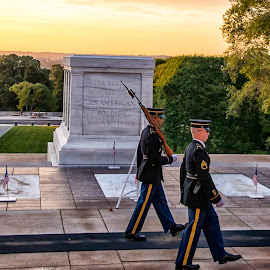 Honor Guard at the Tomb of the Unknown Soldier by Carol Ward - Buildings & Architecture Statues & Monuments ( army, arlington national cemetery, honor guard, washington dc, tomb of the unknown soldier, military )