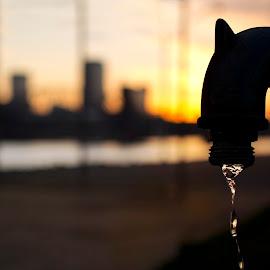 Drip by Joel Thompson - City,  Street & Park  Skylines ( north little rock, skyline, little rock, dripping, dark shadows color, sillouette, water drip, photo, faucett, riverfront park )