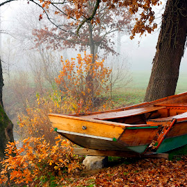 Autumn morning by Mitja Mladkovic - Transportation Boats ( water, damaged, leaves, rowboat, landscape, cold, nature, autumn, fog, horizontal, fall, river, mist )