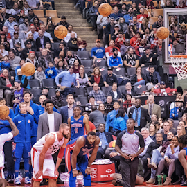 Go Toronto Raptors!  by Akhil Munjal - Sports & Fitness Basketball ( basketball, canada, nba, toronto, raptors )