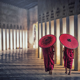 Two buddhist monk novice holding red umbrellas and walking in pa by Nuttawut Uttamaharach - People Street & Candids ( monks, religious, young, kid, burma, two, red, holding, hsinbyume, white, children, mingun, buddha, walking, tradition, novice, umbrella, old, asia, bagan, asian, myanmar, burmese, buddhism, monk, portrait, mandalay, people, religion, pagoda, monastery, traditional, blue, robe, background, culture, person, buddhist, temple, travel, little )