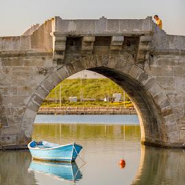 Mimar Sinan köprüsü by Veli Toluay - Buildings & Architecture Bridges & Suspended Structures (  )
