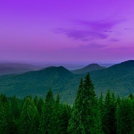 Transbucegi by Preda Marius - Landscapes Mountains & Hills