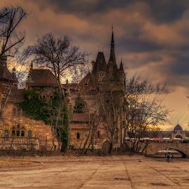 Budapest by Bela Paszti - Buildings & Architecture Public & Historical ( hungary, bp, budapest, park, pest, castle,  )