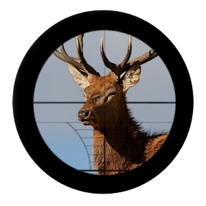 DEER HUNTING 16: FOUR SEASONS