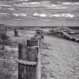 to the beach by Deborah Felmey - Landscapes Beaches ( landscape photography, beach, landscapes, landscape )