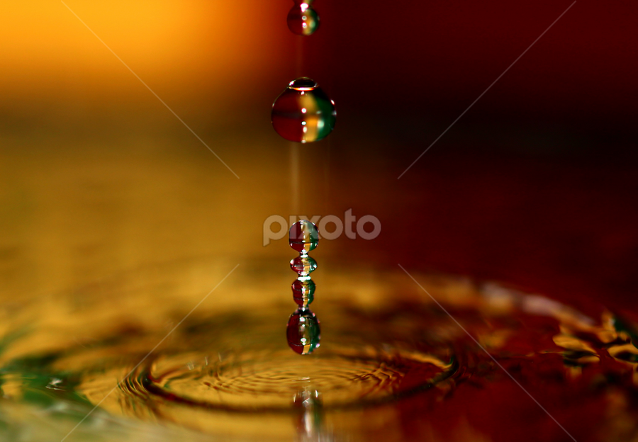 water drops on mustard. by Dipali S - Abstract Water Drops & Splashes ( water, orange, mustard, drops, yellow )