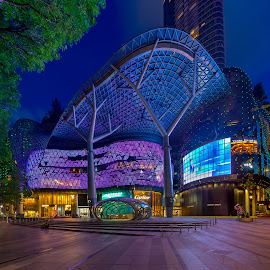 The ION by Binoy Uthup - Buildings & Architecture Office Buildings & Hotels ( canon, ion, shop, building, hdr, night lights, modern architecture, orchard, cityscape, architecture, ion at orchard, hdr photography, singapore, nightscape, city, shopping mall, urban, night photography, night, night shot )