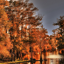 Lake Martin Louisiana by Ron Olivier - Digital Art Places ( lake martin louisiana, , Christmas, card, Santa, Santa Claus, holiday, holidays, season, Advent )