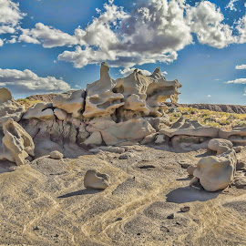 by Judy Heitzman - Landscapes Deserts